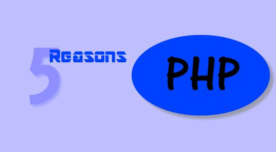 Five Reasons Why You Should Go With PHP