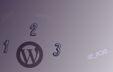 Pagination when getting post from category in Wordpress