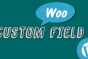 To Create custom field in Woocommerce Products Admin Panel