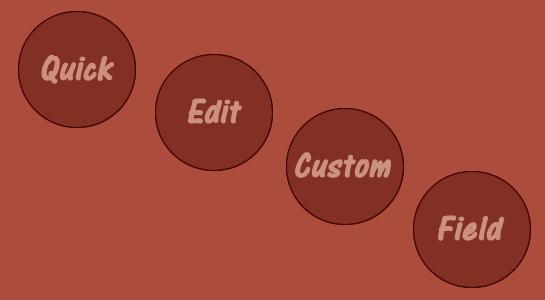 Add Custom Field in QuickEdit Option Wordpress