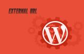 Allow External domain in Wordpress