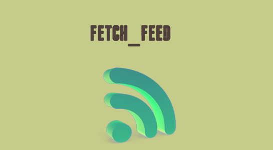 How to fetch and display feed in WordPress