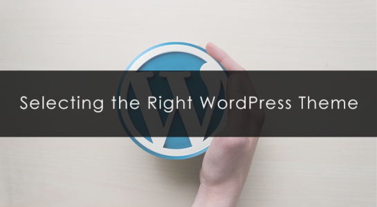 selecting-the-right-wordpress-theme