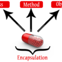 Concept of PHP Encapsulation